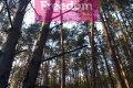 Zdjęcie do ogłoszenia: Działka leśna Laskowizna  29 , 64  zł/m 2  leśna
